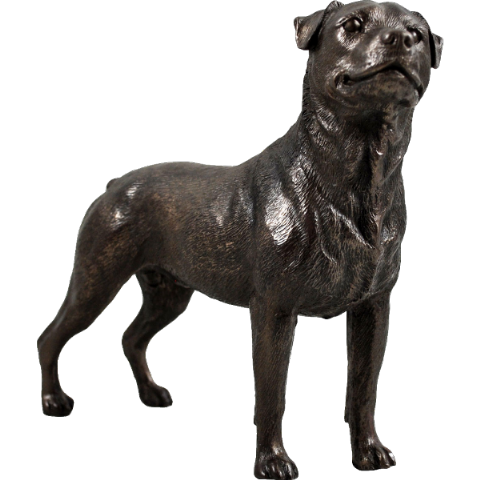Rottweiler Cold Cast Bronze Sculpture